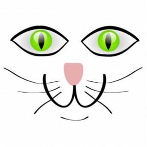 gato cara