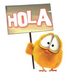hola pollito