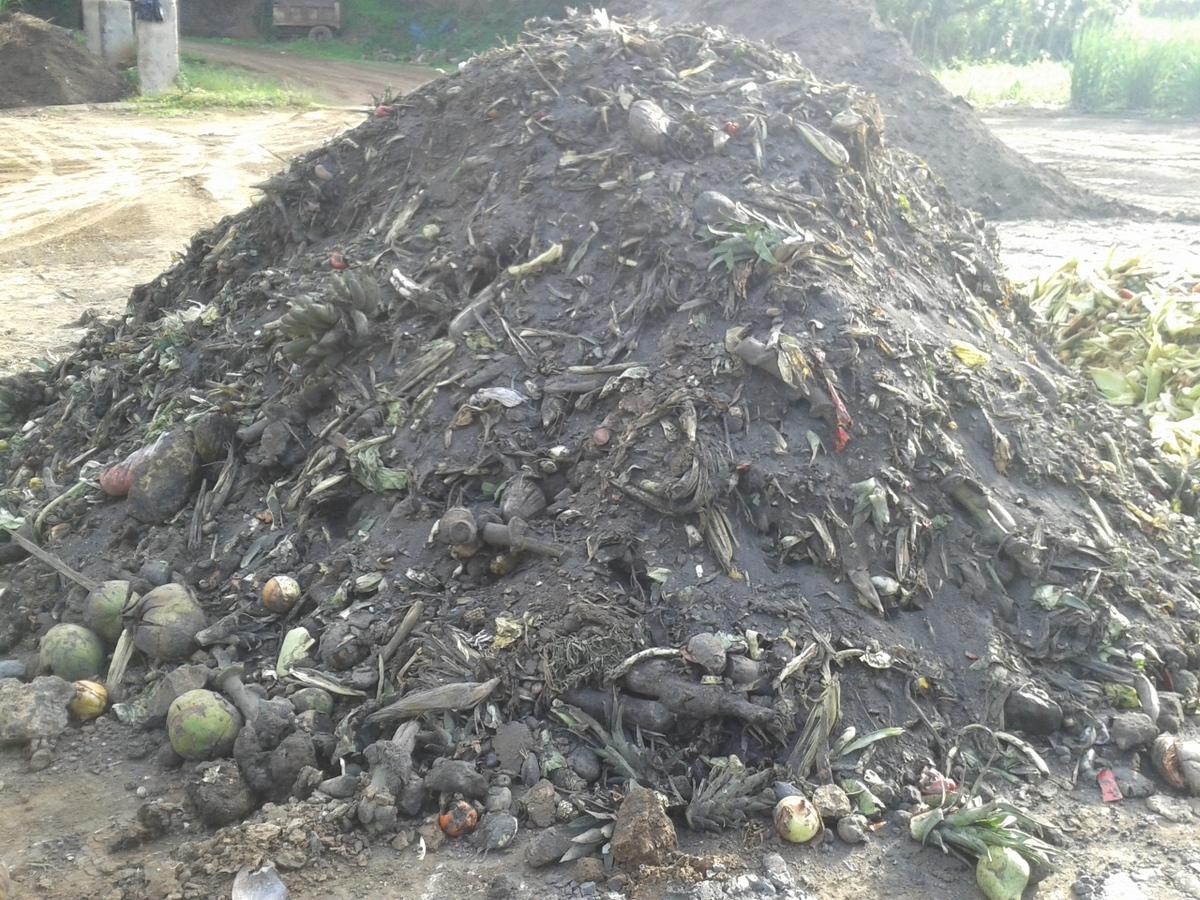 abono orgánico Coopecañera